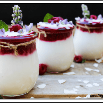 Raspberry Coconut Yogurt