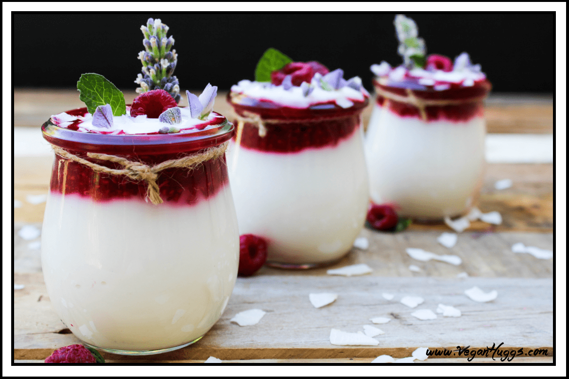 Any yogurt lovers out there like me? Don't you just love the creamy texture, coupled with sweet and tangy goodness? Well, this Raspberry Coconut Yogurt will provide all that and more.