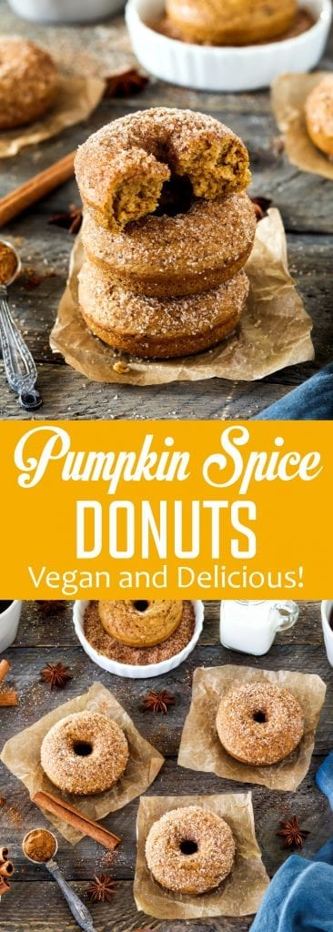 These Cinnamon Sugar Pumpkin Spice Donuts are the perfect way to welcome fall! They're warm-spiced, pumpkiny, vegan and delicious!