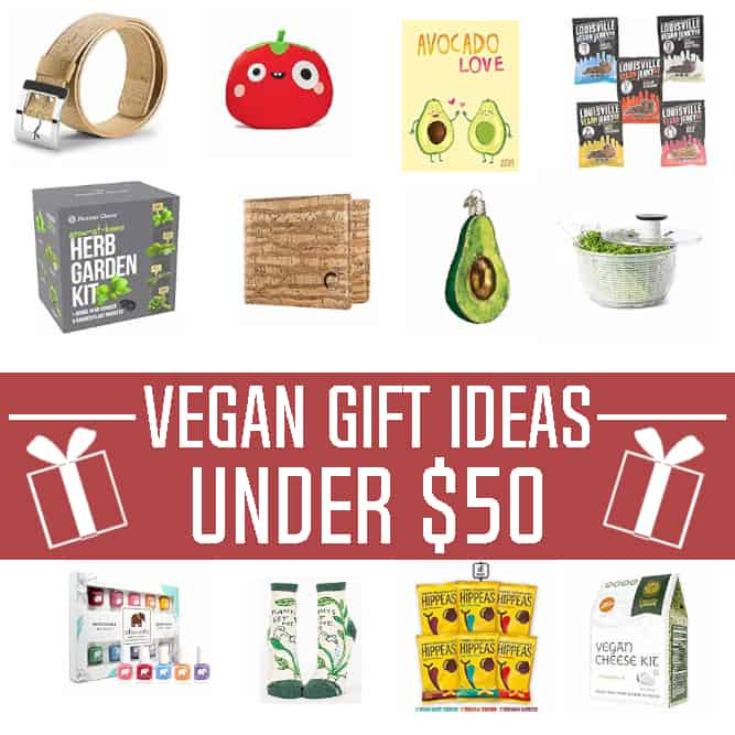 Thinking about what to buy for the vegan in your life? These Holiday Vegan Gift Ideas will make your shopping a breeze! They're all under $50 dollars too!
